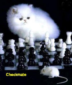Checkmate !